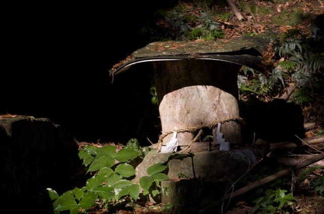 対馬に1カ所だけある蜂洞神社(三根町の小牧宿祢神社)