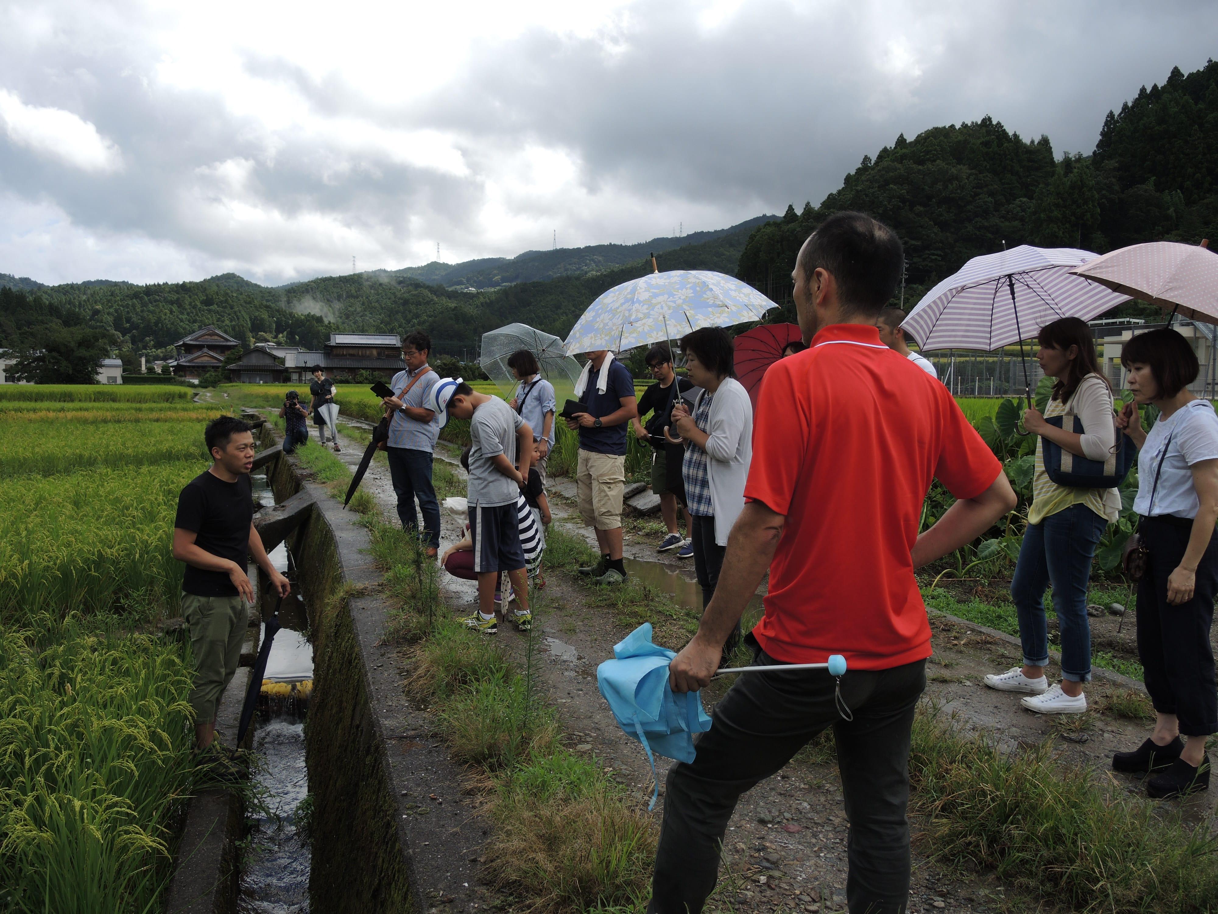 側、田んぼに入って説明しているのが、つなぐ公社の白桃薫さん。