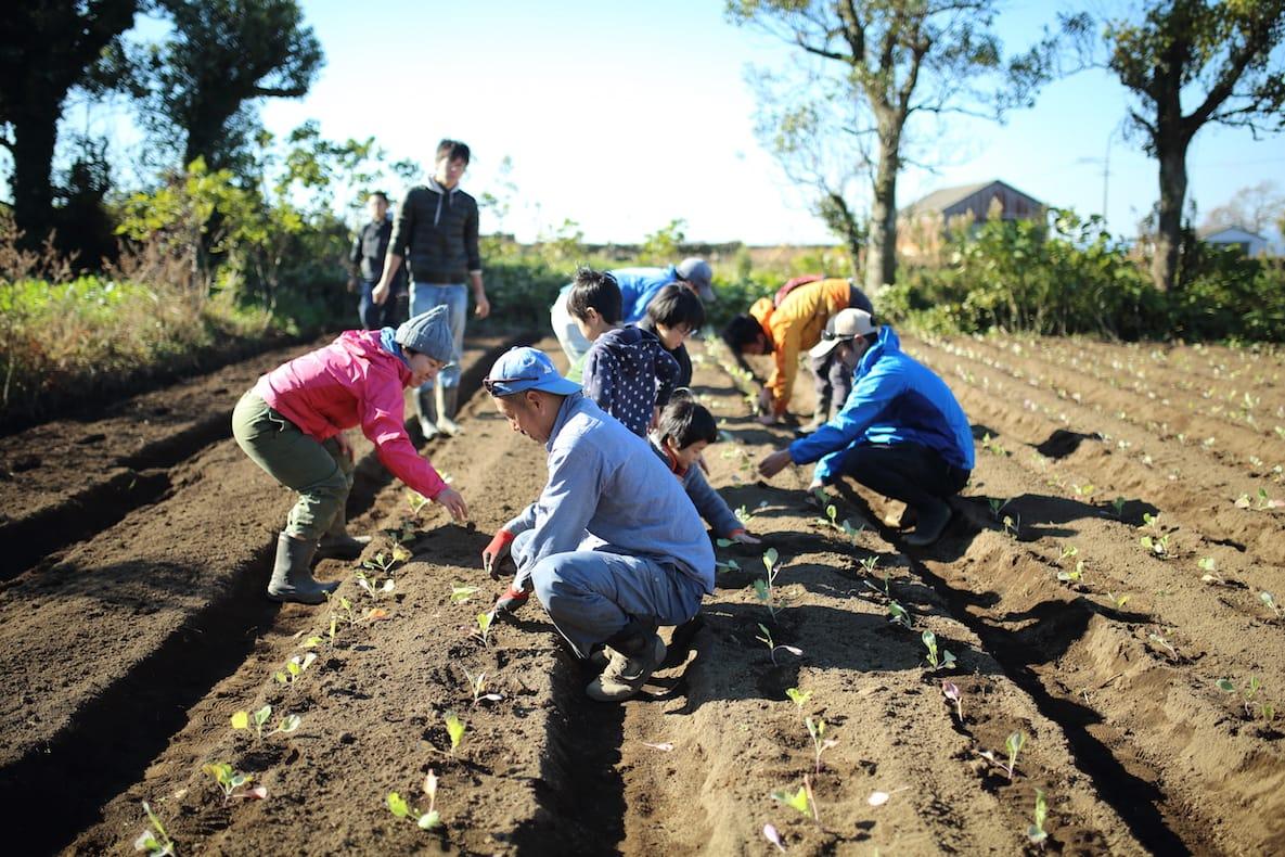 岩崎さんを中心に、地元の若手農家、デザイナー、八百屋などのメンバー8人で「雲仙・種をあやす会」を結成。定期的に種の勉強会を開催している。