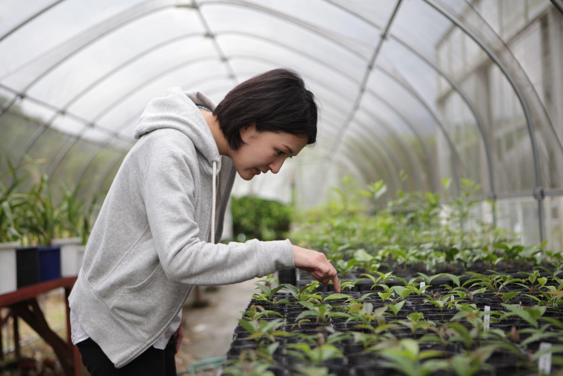 集合住宅づくりでは「緑地も地域の植栽でつくる」ことも大切に考え、城西高校神山分校の造園土木科の生徒たちと鮎喰川流域の自然植生の種を採取して育てています。