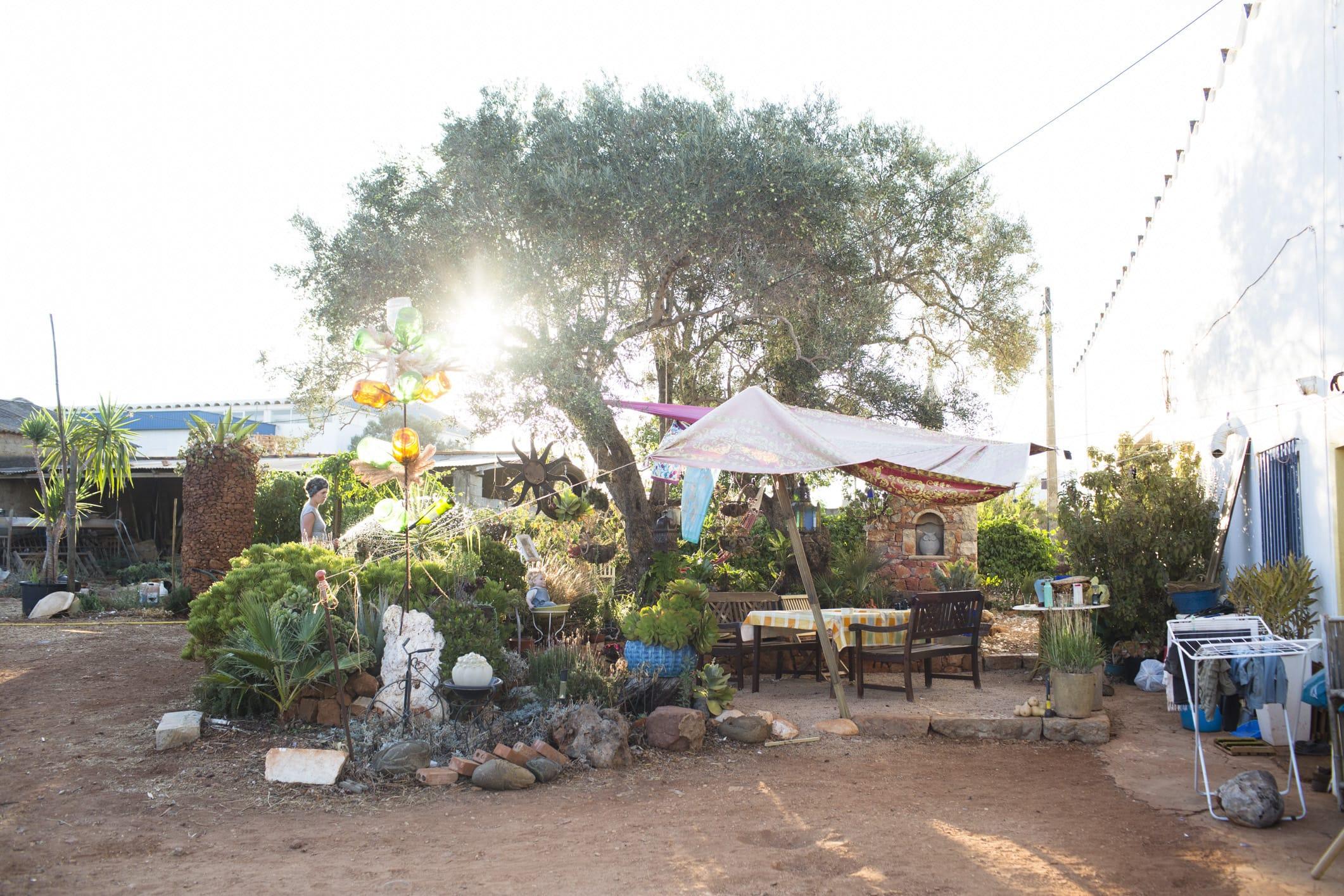 ポルトガル最南端の町、アルゴスのオーガニックファーム。