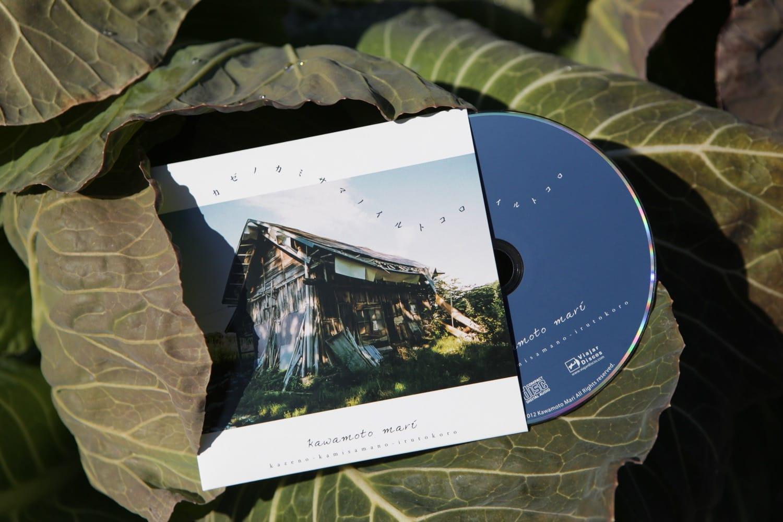 自然からもらうエネルギーを表現する川本さんの作品「カゼノカミサマのイルトコロ」。神山のキャベツのうえで撮影。