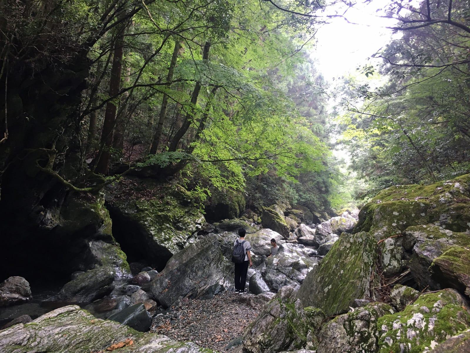 2daysでは、体験授業をしたり、卒業生と話したり、町の取り組みを見て回ったり。森山さんは「自然も堪能しなきゃ!」と川にも案内しました! (神山つなぐ公社提供)
