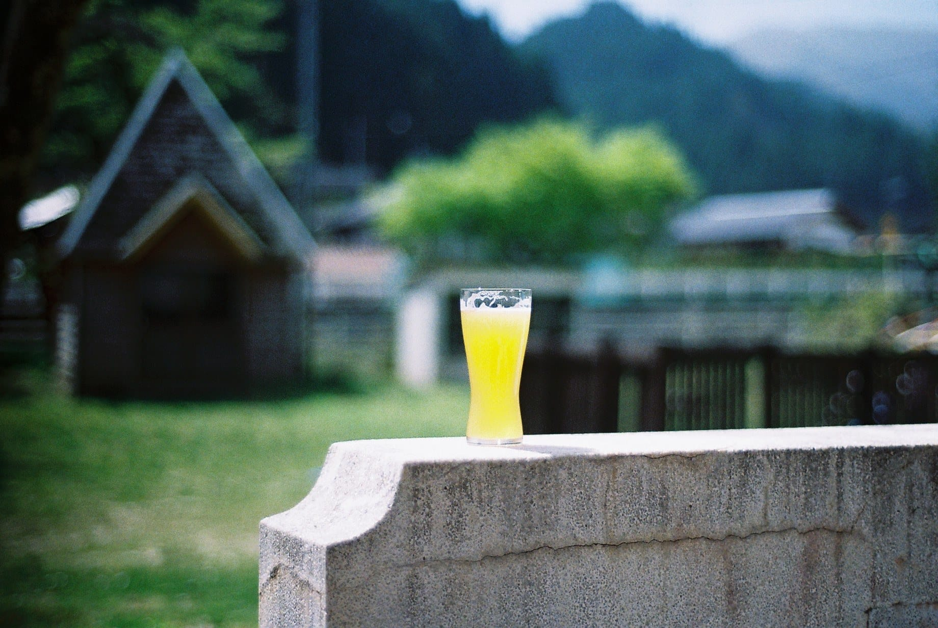 「タルマーリー」のビール
